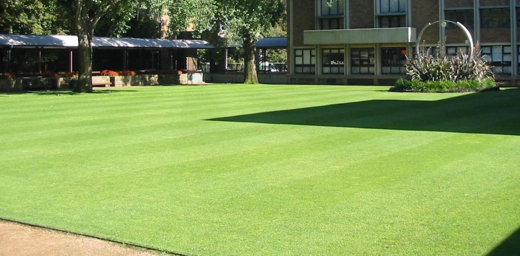 How to create a prize winning lawn