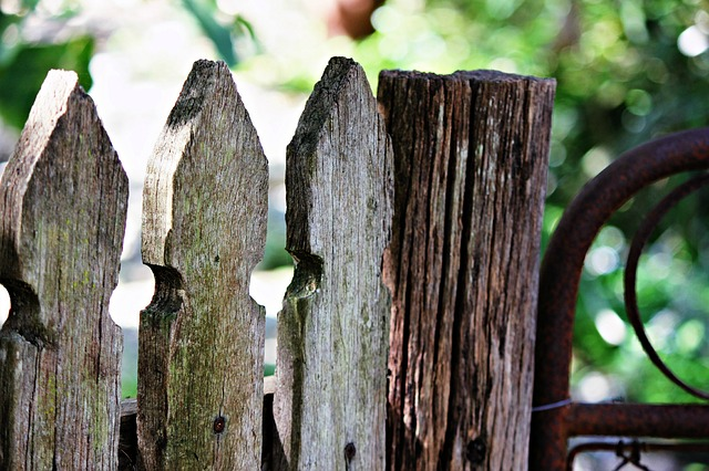 rotten fence